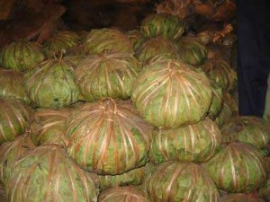 In Upper Guinea large balls of shea are wrapped in Kapok leaves and tied.